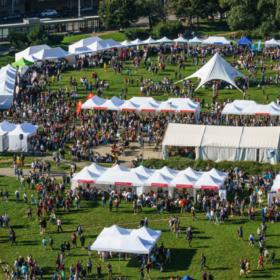 Festival vědy se letos koná online a zástupci VŠE na něm nechybí